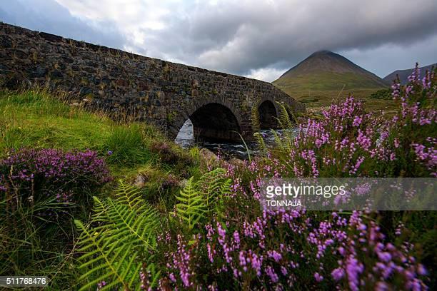 sligachan old bridge, isle of skye - glen sligachan photos et images de collection