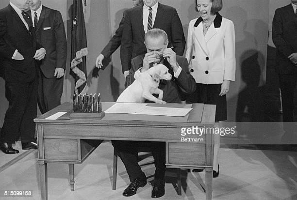 Slight obstacle presented itself when President Johnson prepared to sign the meat inspection bill at the White House today. His pet dog Yuki jumped...