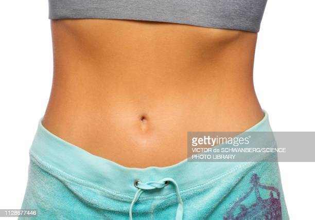 slim woman's waist - navel stock pictures, royalty-free photos & images