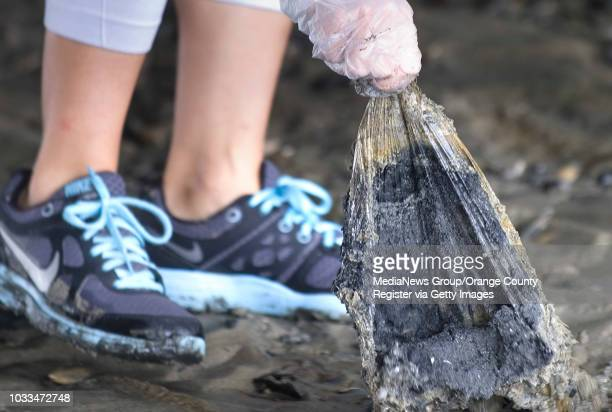 A slimy plastic bag is yanked from the sand at Huntington State Beach by cleanup volunteer Brianna Spiker of Rancho Cucamonga on Saturday...