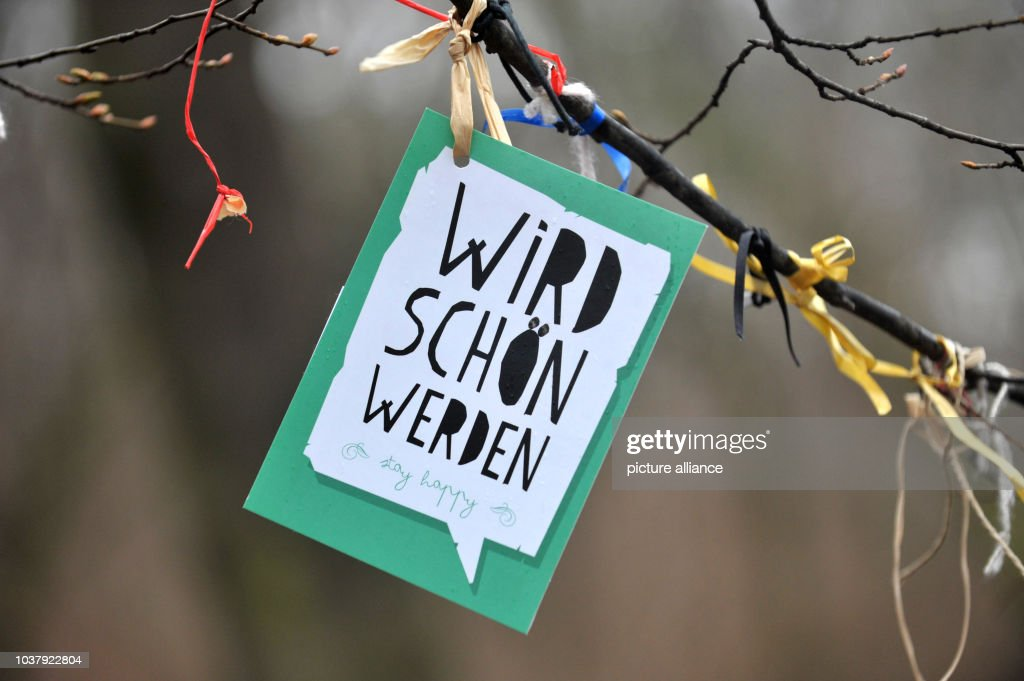Wishing tree in Volkspark Friedrichshain Pictures | Getty Images