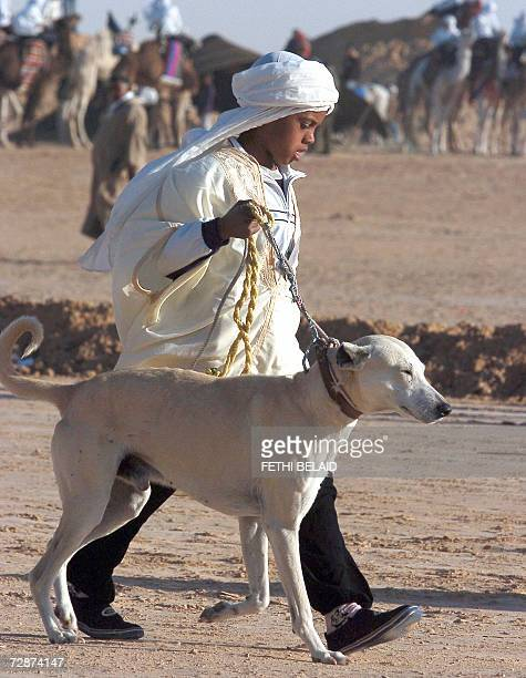 A sloughis a desert greyhound and its tamer arrive to the opening of the Sahara International Festival in Douz southwestern Tunisia 24 December 2006...