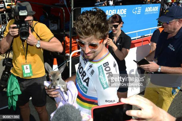 Slovak rider Peter Sagan from BoraHansgrohe cuddles a kangaroo prior to the start of the second day of the Tour Down Under cycling race in Adelaide...