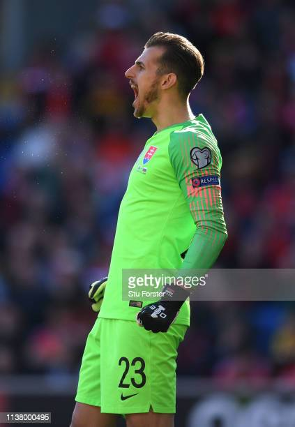 Slovakia and Newcastle United goalkeeper Martin Dubravka in action during the 2020 UEFA European Championships group qualifying match between Wales...