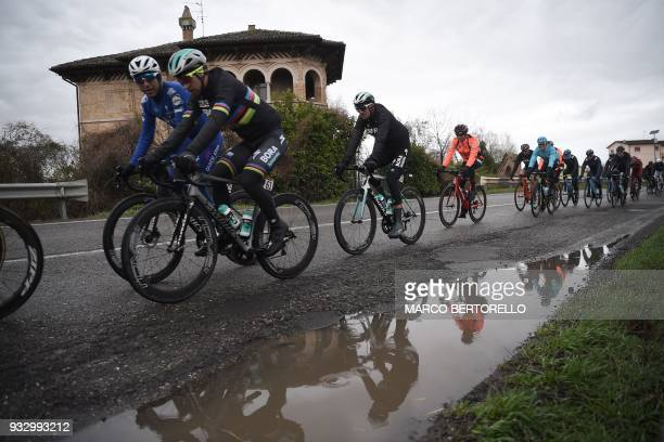 Slovakia's Peter Sagan of team Bora Hansgrohe rides in the pack during the 109th Milan San Remo cycling race on March 17 2018 near Pavia / AFP PHOTO...