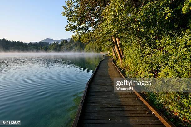 slovenia, gorenjska, bled, wooden boardwalk at lake bled - bledsjön bildbanksfoton och bilder