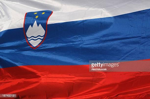 スロベニアフラグ - スロベニア国旗 ストックフォトと画像
