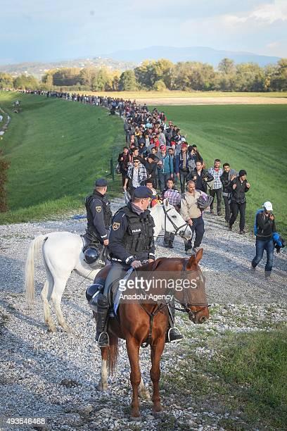 escort slovenia