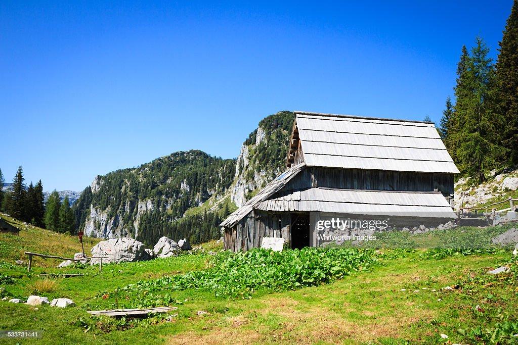 Slovenian Shepherd's Hut : Foto stock