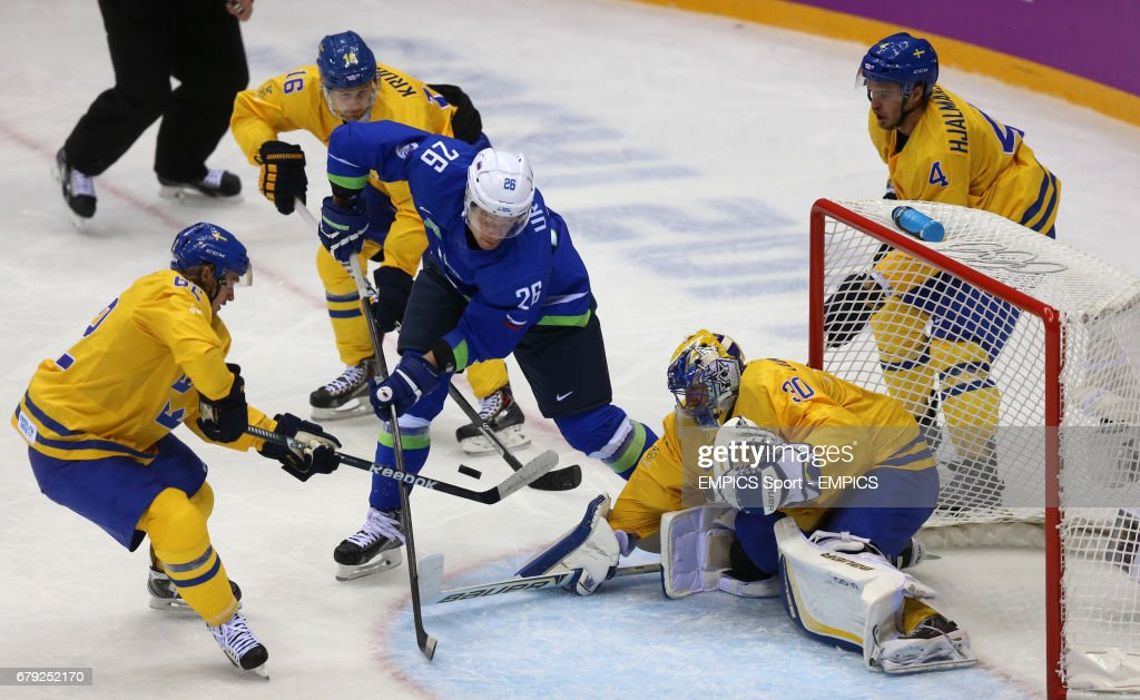 Sochi Winter Olympic Games - Day 12 : News Photo