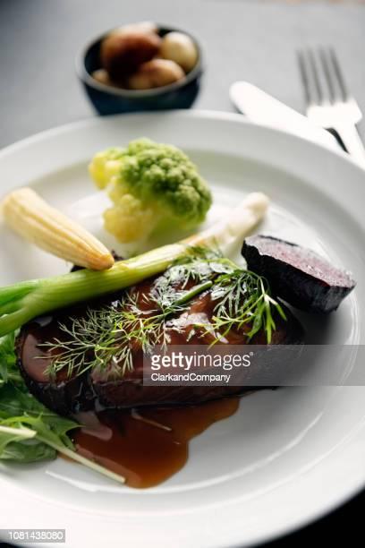 carne de veado cozido lento - carne de cervo - fotografias e filmes do acervo