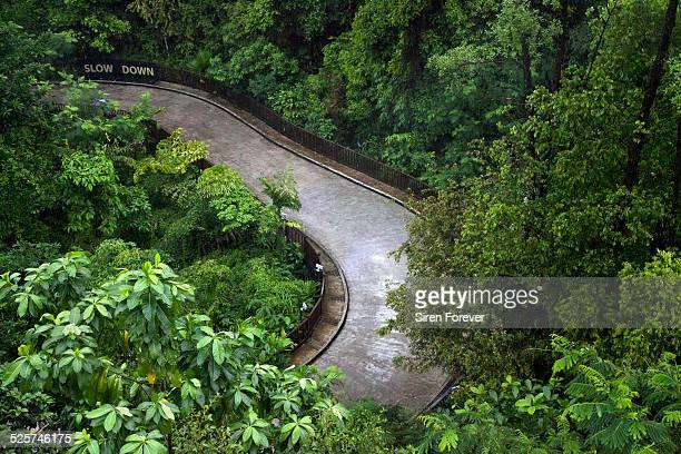 Slow Down Sentosa Island Singapore