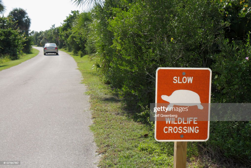 Slow Turtle Crossing >> A Slow Turtle Wildlife Crossing Sign In Carl E Johnson Public Park