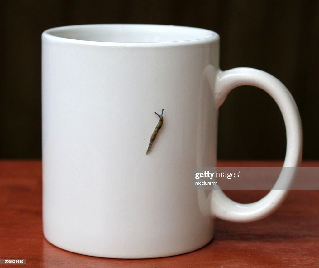 Slug Mug : Stock Photo
