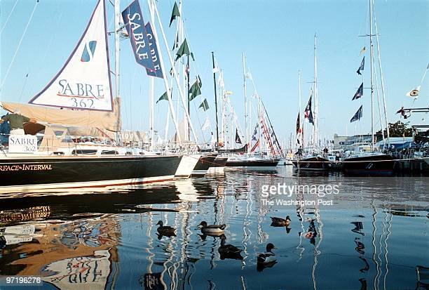 City Dock in Annapolis MarylandPHOTOGRAPHERMARVIN JOSEPH/TWPCAPTION Every year 50000 jam Annapolis for the oldest largest inwater boat show in the...