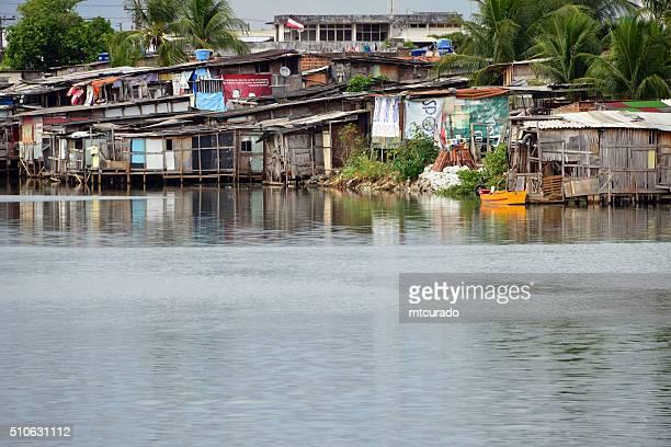 slum am fluss-recife, pernambuco, brasilien - nordöstliches brasilien stock-fotos und bilder