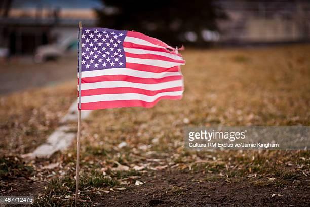 Small american flag in suburban garden