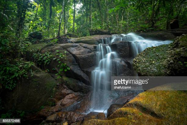 small and safe water flows, cool air and green scenery are attractions that you can enjoy when you visit ampang waterfall in selangor, malaysia - shaifulzamri bildbanksfoton och bilder