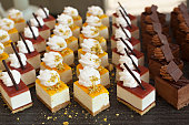 Small assorted cakes lined up in rows on dessert buffet