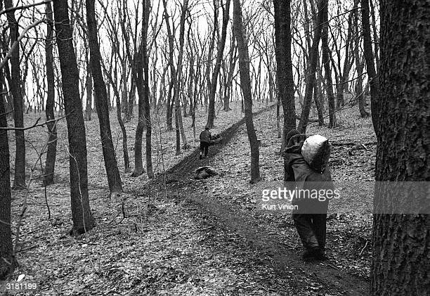 Small bags of coal are moved up a hill to a waiting truck where it will be picked up by the local mafia and resold later February 25 2002 near...