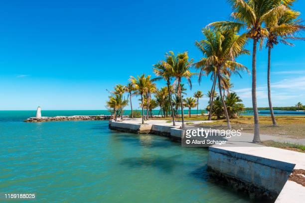 small bay in marathon florida keys - florida keys stock pictures, royalty-free photos & images