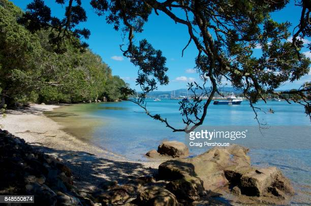 Small beach on Back Bay, in Whitianga Rock Scenic and Historical Reserve.