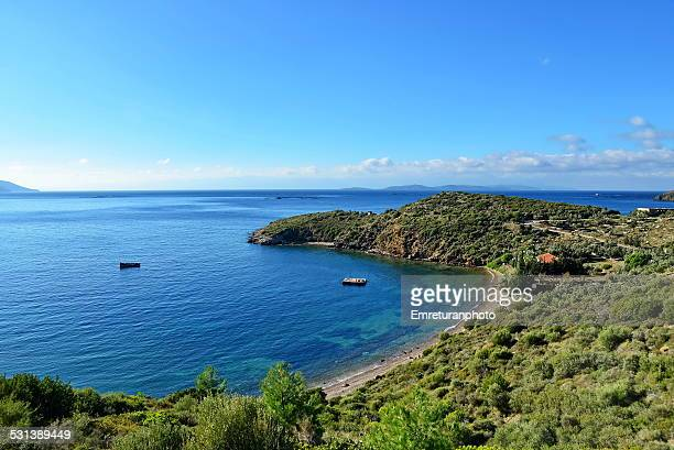 small beach with a house and pine trees - emreturanphoto stock pictures, royalty-free photos & images