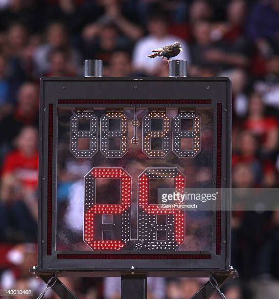 A small bird on the shot clock during the game between the Dallas Mavericks and Portland Trail Blazers on April 13 2012 at the Rose Garden Arena in...