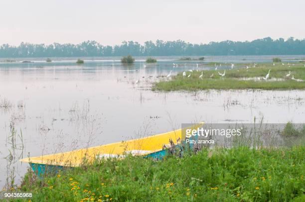 small boat at the shore of a lake in the metropolitan park at león, gto. - leon boden stock-fotos und bilder