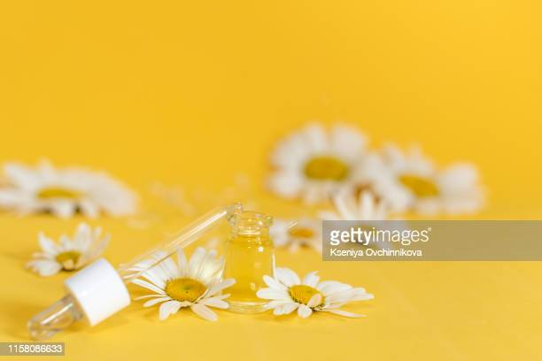 small bottle of cosmetic chamomile oil and wooden hair comb - chamomile tea stock pictures, royalty-free photos & images