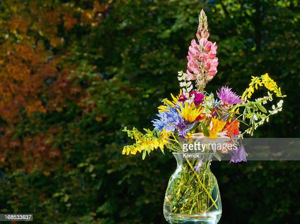 small bouquet of wild flowers.