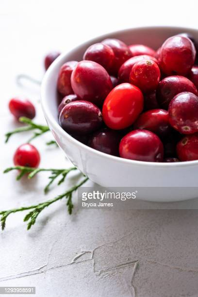 a small bowl of fresh cranberries on white - brycia james stock pictures, royalty-free photos & images