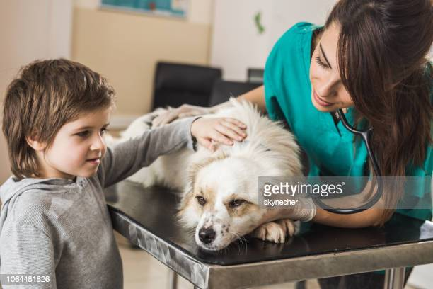 small boy caring for his dog while having a medical exam at veterinarian's office. - malattia infettiva foto e immagini stock