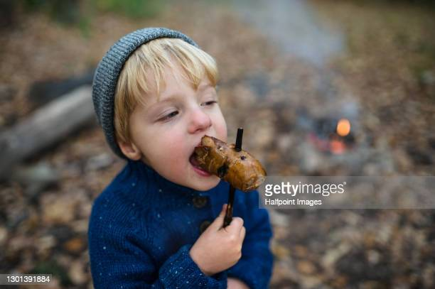 small boy eating roasted sausage on stick over campfire in forest. - sausage stock pictures, royalty-free photos & images