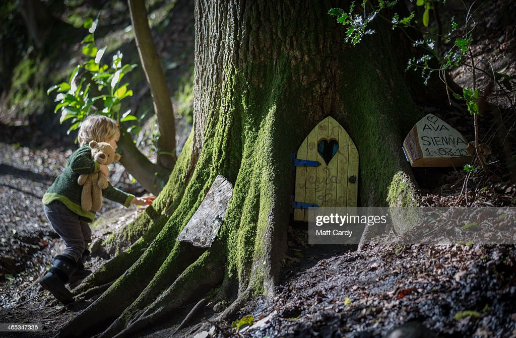 Clampdown On Fairy Doors Appearing In Somerset Woods : News Photo