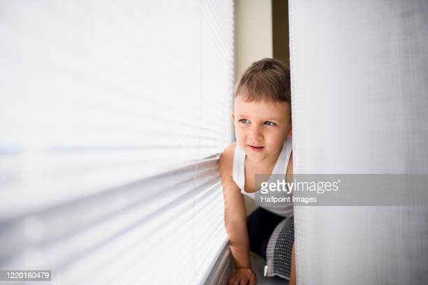 small boy sitting by window indoors at home. copy space. - sin mangas fotografías e imágenes de stock