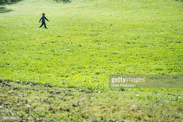 small boy walking alone field meadow - spaß stock pictures, royalty-free photos & images