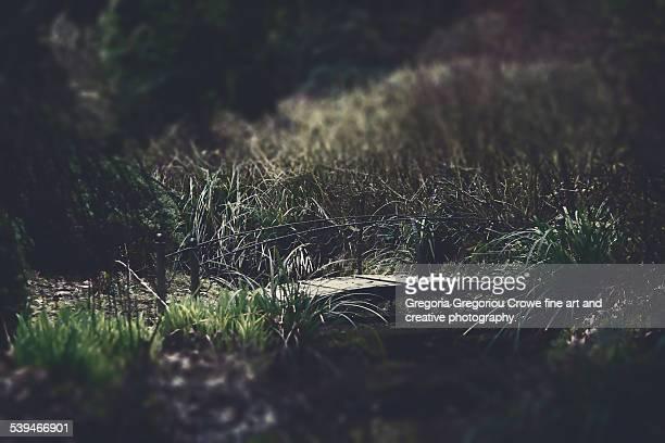 small bridge - gregoria gregoriou crowe fine art and creative photography. bildbanksfoton och bilder