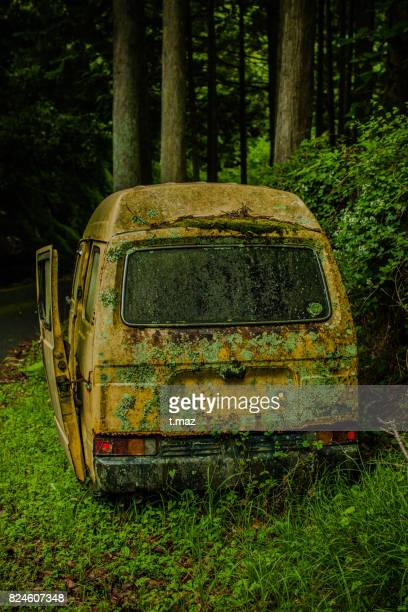 Small car, wish to assimilate into the forest.