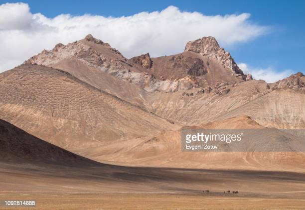 small caravan of tourists rides camels along arid mountains in the pamirs in tajikistan - afghanistan photos et images de collection
