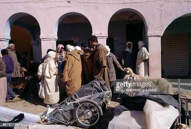 Small cart sheep and men in Ghardaia market Algeria
