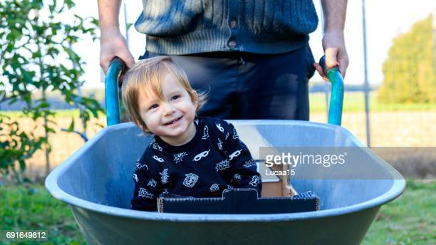 small child in the wheelbarrow - europäischer abstammung stock pictures, royalty-free photos & images