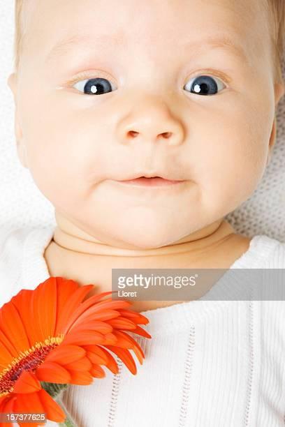 niño pequeño con gerbera - maya desnuda fotografías e imágenes de stock