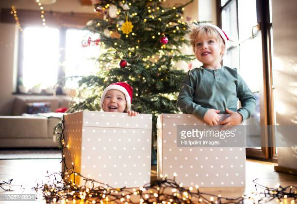 small children sitting indoors at home at christmas time, playing. - kind im grundschulalter stock-fotos und bilder