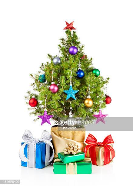Small Christmas tree with gifts under it