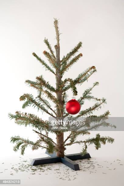 Small Christmas tree with single ornament