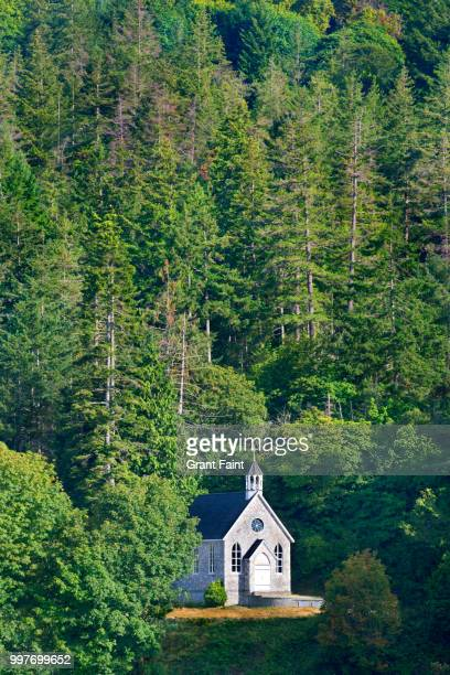 small church in forest. - victoria canada stock photos and pictures