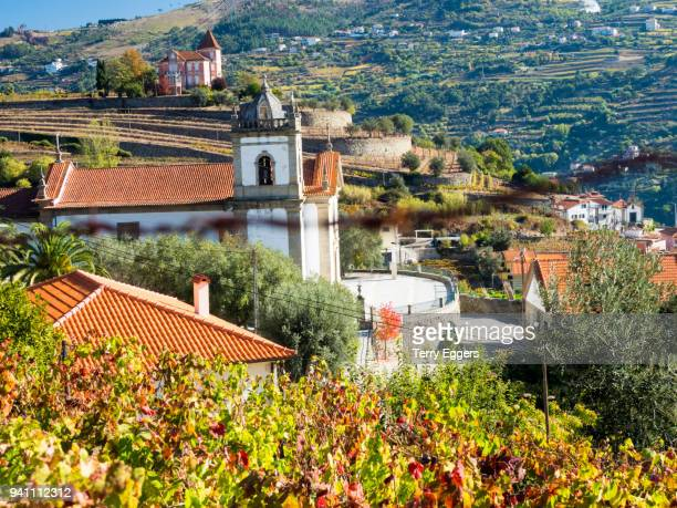 small church in the douro valley with autumn color - douro valley stock photos and pictures