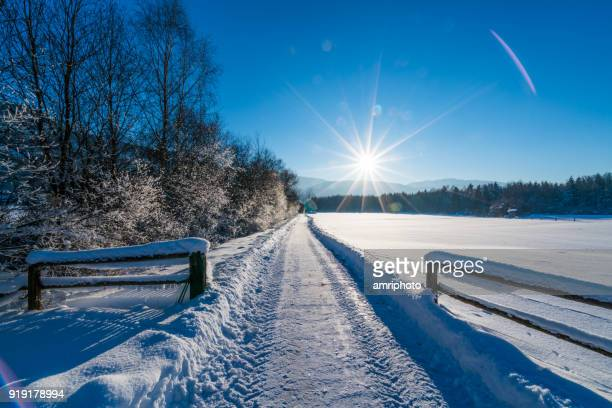 small country road in winter landscape with fresh snow and sunshine