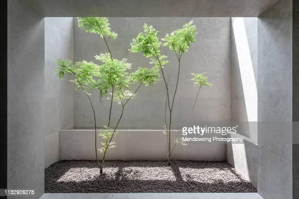 small courtyard - courtyard - fotografias e filmes do acervo